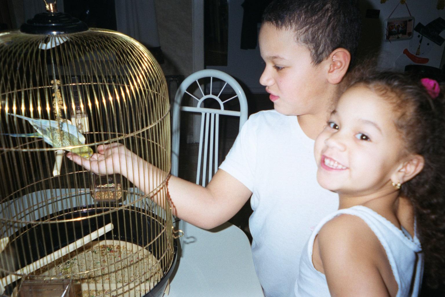 kidsbirds.jpg
